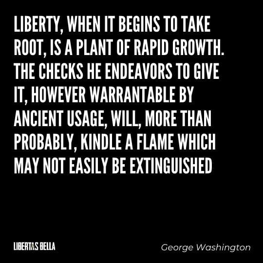 """Liberty Quotes - """"Liberty, when it begins to take root, is a plant of rapid growth. The checks he endeavors to give it..."""""""