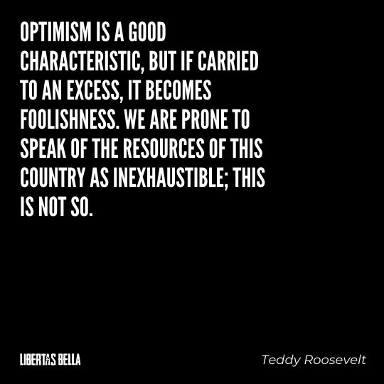 """Teddy Roosevelt Quotes - """" Optimism is a good characteristic, but if carried to an excess, it becomes foolishness..."""""""