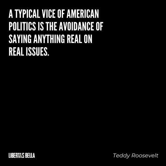 """Teddy Roosevelt Quotes - """"A typical vice of American politics is the avoidance of saying anything real on real issues."""""""