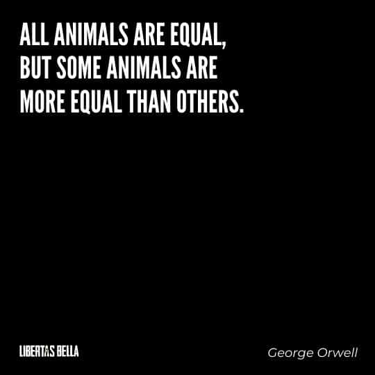 "George Orwell quotes - ""all animals are equal, but some animals are more equal than others"""