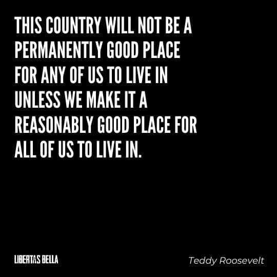 """Teddy Roosevelt Quotes - """"This country will not be a permanently good place for any of us to live in unless..."""""""