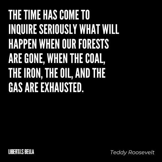 """Teddy Roosevelt Quotes - """"The time has come to inquire seriously what will happen when our forests are gone..."""""""