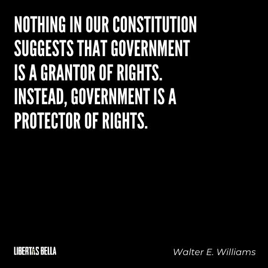 """Walter E. Williams Quotes - """"Nothing in our Constitution suggests that government is a grantor of rights. Instead, government is a protector of rights."""""""