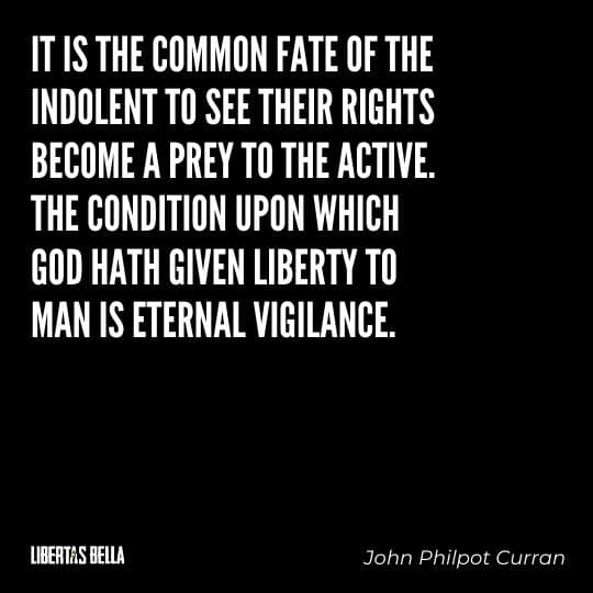 """Liberty Quotes - """"It is the common fate of the indolent to see their rights become a prey to the active..."""""""