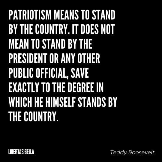 """Teddy Roosevelt Quotes - """"Patriotism means to stand by the country. It does not mean to stand by the president..."""""""