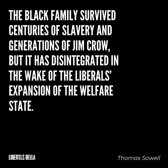 """Thomas Sowell Quotes - """"The black family survived centuries of slavery and generations of Jim Crow..."""""""