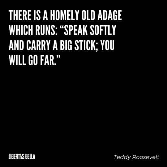 """Teddy Roosevelt Quotes - """"There is a homely old adage which runs: """"Speak softly and carry a big stick; you will go far."""""""