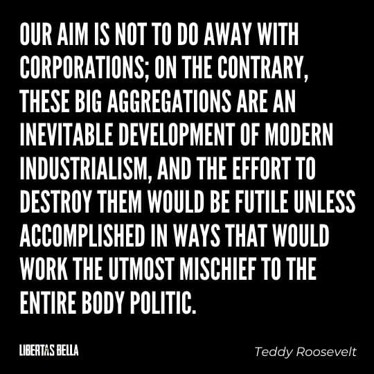 """Teddy Roosevelt Quotes - """"Our aim is not to do away with corporations; on the contrary, these big aggregations..."""""""