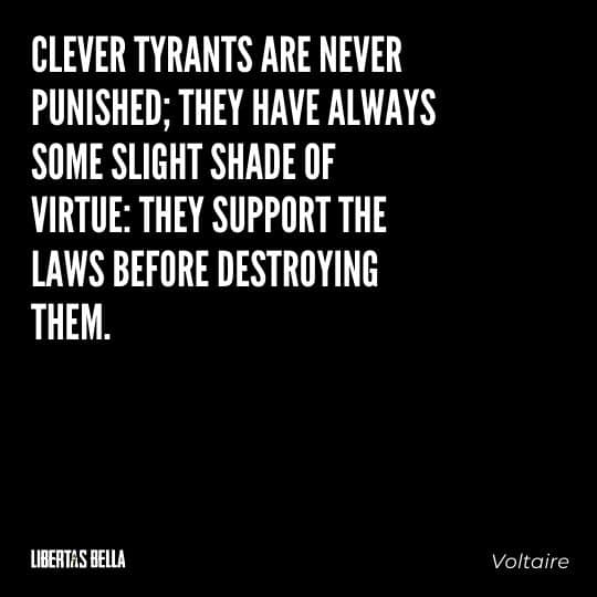"""Voltaire Quotes - """"Clever tyrants are never punished; they have always some slight shade of virtue..."""""""