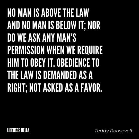 """Teddy Roosevelt Quotes - """"No man is above the law and no man is below it; nor do we ask any man's permission..."""""""