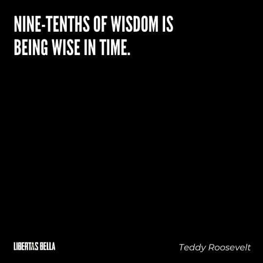 """Teddy Roosevelt Quotes - """"Nine-tenths of wisdom is being wise in time."""""""