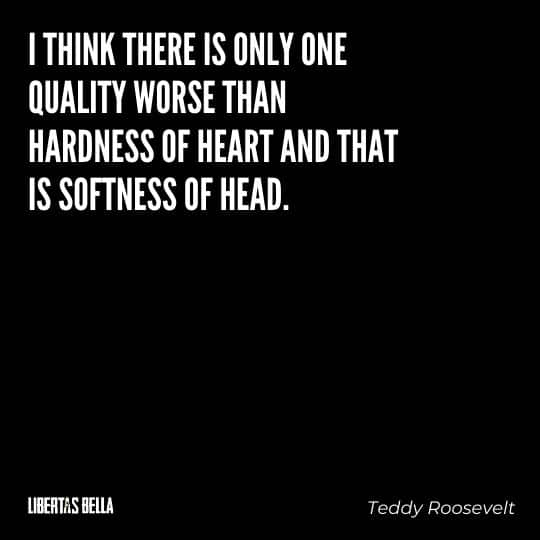 """Teddy Roosevelt Quotes - """"I think there is only one quality worse than hardness of heart and that is softness of head."""""""