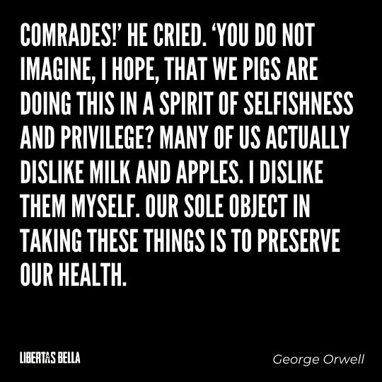 """1984 Quotes - """"Comrades!' he cried. 'You do not imagine, I hope, that we pigs are doing this in a spirit of selfishness..."""""""