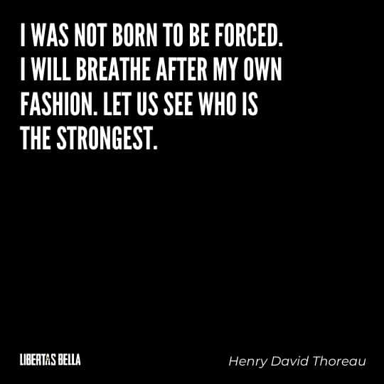 """Civil disobedience quotes - """"I was not born to be forced."""""""