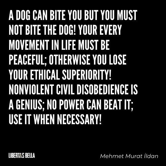 """Civil disobedience quotes - """"A dog can bit you but you must not bite the dog! Your every movement in life must be..."""""""