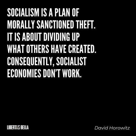 """Capitalism quotes - """"Socialism is a plan of morally sanctioned theft. It is about dividing up what..."""""""