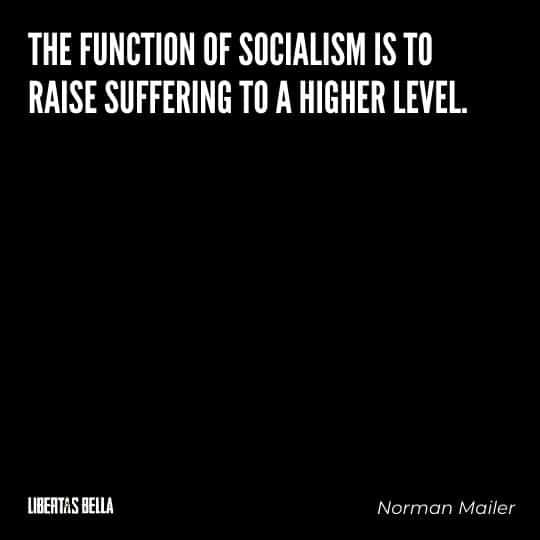 """Socialism quotes - """"The function of socialism is to raise suffering to a higher level."""""""