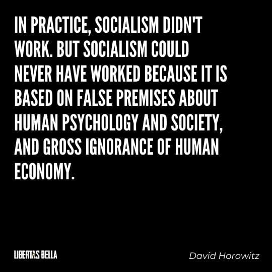 """Socialism quotes - """"In practice, socialism didn't work. But socialism could never have worked because it is based on falls premises..."""""""
